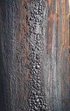 Vieux plan rapproché de texture de fléau de poteau de télégraphe Photographie stock libre de droits