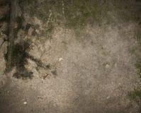 Vieux plancher en béton porté souillé Photographie stock libre de droits