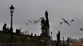 Vieux pont dans la ville de Prague 2 Photo stock