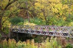 Vieux pont de chute Photo libre de droits