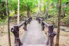Vieux pont en bois dans l'humidité tropicale de forêt tropicale image stock