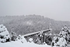 Vieux pont en fer pendant l'hiver Photographie stock libre de droits