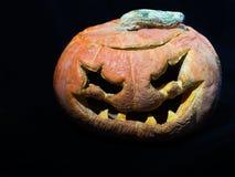 Vieux potiron de Halloween D'isolement sur un backgropund noir photos stock