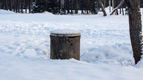 Vieux puits dans le pré d'hiver dans la forêt photo libre de droits
