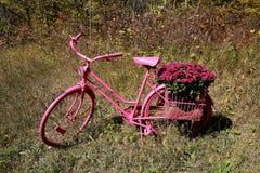Vieux rétro vélo utilisé comme décoration de yard image libre de droits