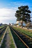 Vieux rails de fer avec l'herbe verte Images stock