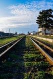 Vieux rails de fer avec l'herbe verte Photographie stock