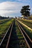 Vieux rails de fer avec l'herbe verte Photo stock