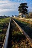 Vieux rails de fer avec l'herbe verte Photos libres de droits