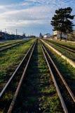 Vieux rails de fer avec l'herbe verte Photos stock