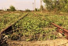Vieux rails rouillés abandonnés avec des mauvaises herbes et des usines par elles photographie stock libre de droits