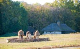 Vieux rucher près du village Photo libre de droits