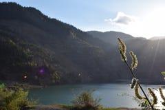 Vieux secteur de lac de mine des jours d'été Images stock