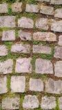 Vieux sentier piéton de pavé rond Photographie stock