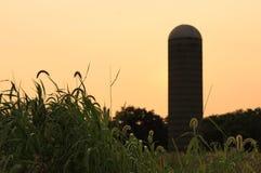 Vieux silo de ferme dans le pré Image libre de droits
