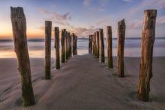 Vieux St Clair Beach Dunedin de jetée Photographie stock libre de droits