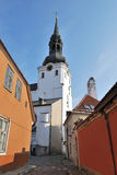 Vieux Tallinn. Le dôme Photo stock