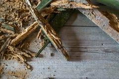 Vieux tas de vieux conseils en bois cassés avec de vieux clous Fond de texture Photo libre de droits