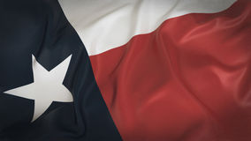 Vieux Texas Flag Images stock
