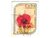 vieux timbre-poste du Cuba Images libres de droits