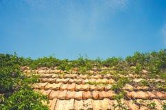 Vieux toit carrelé et ciel propre bleu image stock