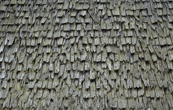 Vieux toit de bardeau Photo stock