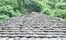 Vieux toit en bois sur la forêt en jour pluvieux. Images libres de droits