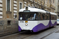 Vieux tram sur des rues de Timisoara Photo stock