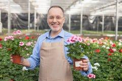 Vieux travailleur gai de jardin en cours de travail Photos stock