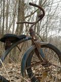 Vieux tricycle dans la forêt Photos stock