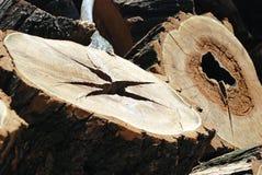 Vieux tronçons en bois Photo stock