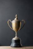 Vieux trophée Image libre de droits