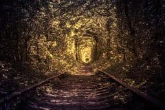Vieux tunel de forêt et de chemin de fer de l'amour Images stock