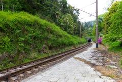 Vieux tunnel de chemin de fer Photo libre de droits