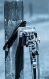 Vieux tuyaux mécaniques de jardin Images stock