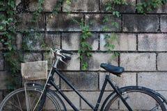 Vieux vélo Photos stock
