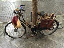 Vieux vélo Photo libre de droits