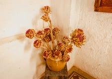 Vieux vase avec les fleurs sèches Images libres de droits