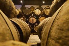 Vieux a vieilli les barils en bois traditionnels avec du vin dans une chambre forte align?e dans la cave fra?che et fonc?e en Ita photographie stock libre de droits