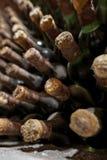 Vieux vieillissement de vin dans la cave images stock