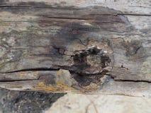 Vieux vintage en bois de fond naturel image libre de droits