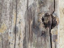 Vieux vintage en bois de fond naturel photographie stock libre de droits