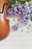 Vieux violon et fleurs lilas sur le fond en bois blanc Instrument de musique ficelé Étroitement, wiev supérieur, fond de ressort  photo libre de droits