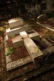 Vieux yard grave Images stock
