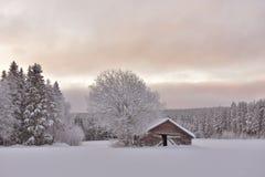 Viev зимы Стоковые Фотографии RF
