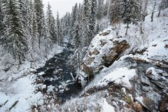 Viev from the top of waterfall. In beautifull winter forest stock photos