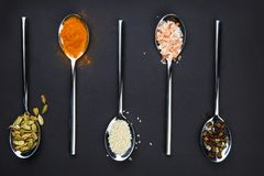 View from above. On a black background a spoon with various spices. Stock Photos