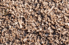 Top view on a pile of shredded tree branches stock image