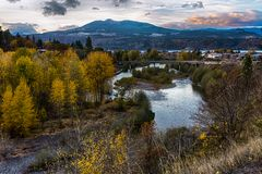 Yellow foliage trees in Hood River, Oregon royalty free stock photos