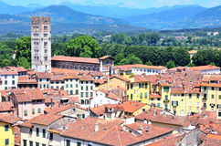 View from above of Lucca Royalty Free Stock Photo